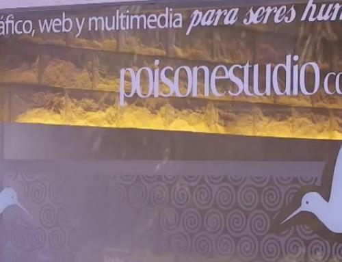 Por qué Poison Estudio