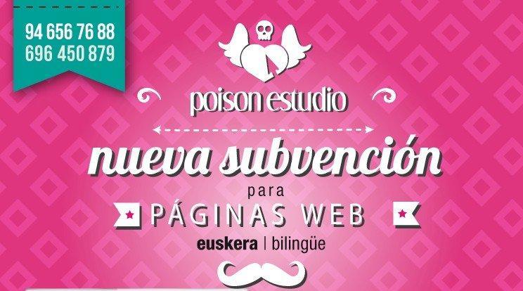 mailing para subvecion de paginas web en euskera y bilingüe en Poison Estudio paginas web en Bilbao