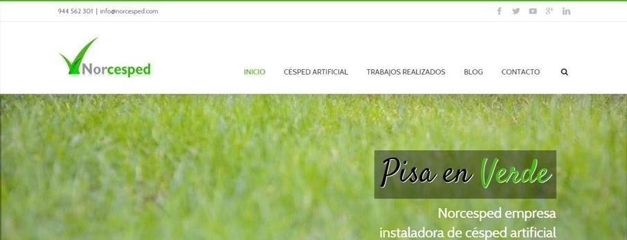 web de norcesped por poison estudio en bilbao