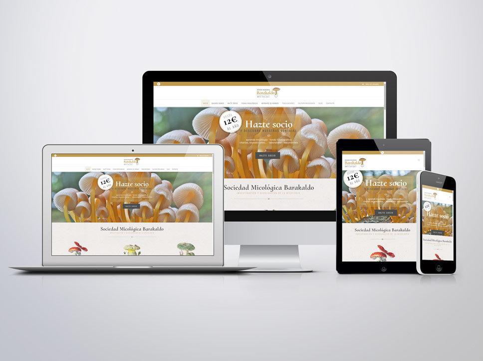 diseño web para sociedad micologica barakldo
