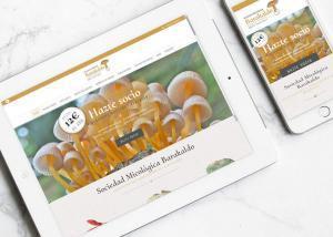 diseño web y maquetación para la sociedad micológica barakaldo