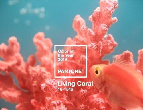 Living coral, color del año 2019