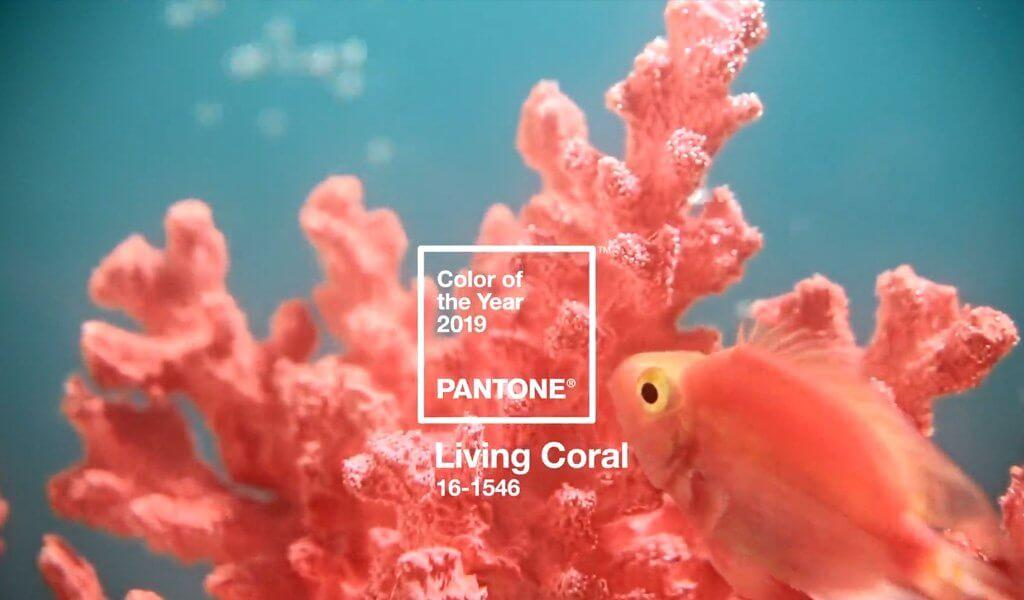 color living coral